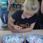 Sommerfest2015_015